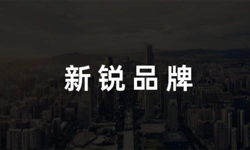 万字解读丨新锐品牌如何【新锐】?