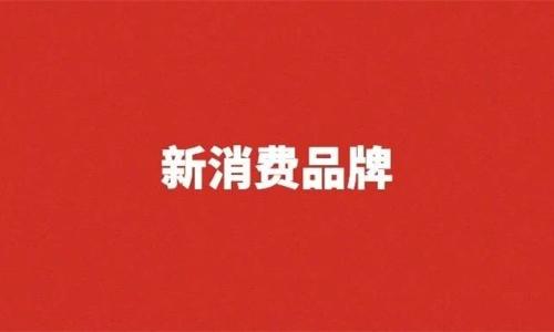 【新消费品牌真相】新100条